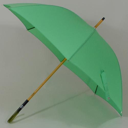 parapluievertcitron2