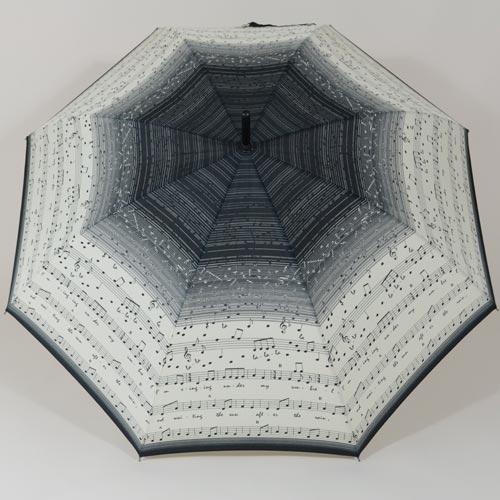 Parapluie du musicien
