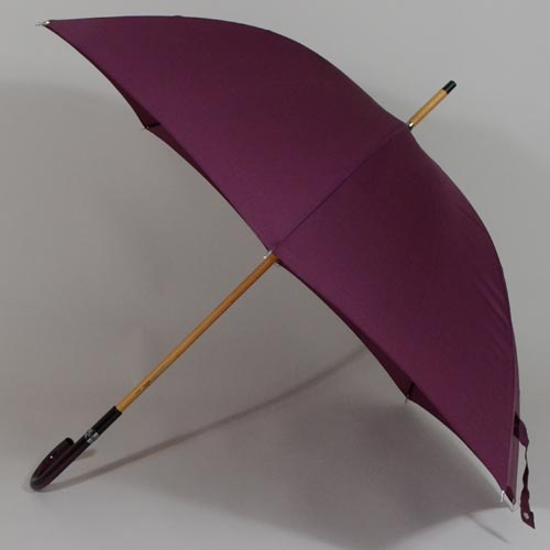 parapluieprune1