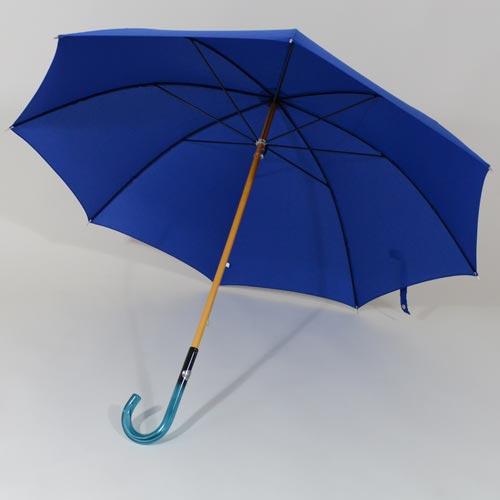 parapluiebleuelectrique1