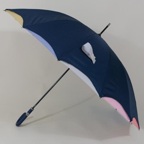 parapluiearccielbleu2