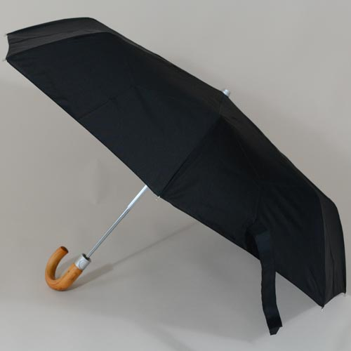 parapluievogalu2
