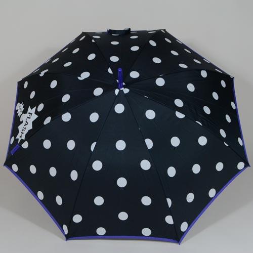 parapluiesnowflake4