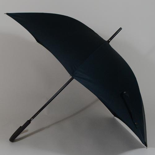 parapluiecambridge1