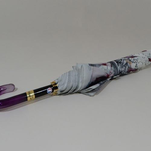 parapluieparis19004