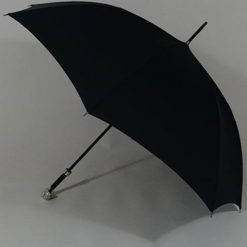 parapluiepirate2