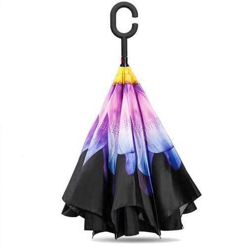 parapluiesuprellaflower2