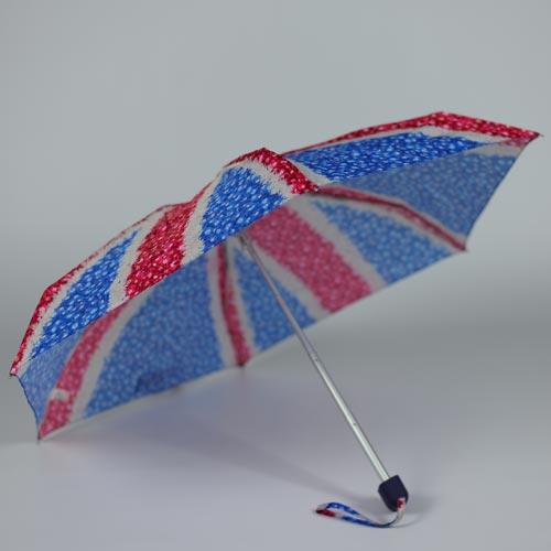 parapluiedaisyjack3