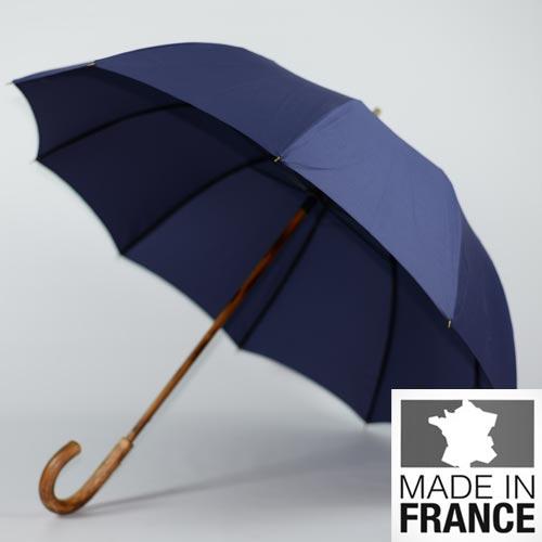 parapluie de berger bleu 1