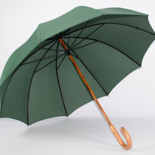 parapluie de berger vert 2