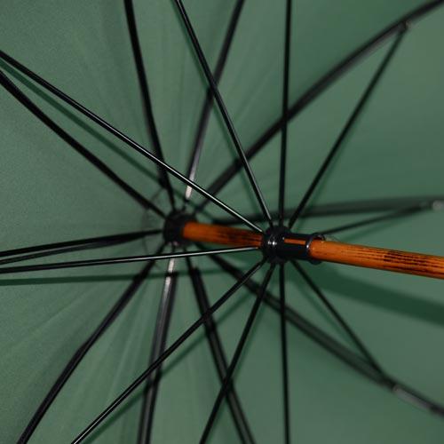 parapluie de berger vert 5