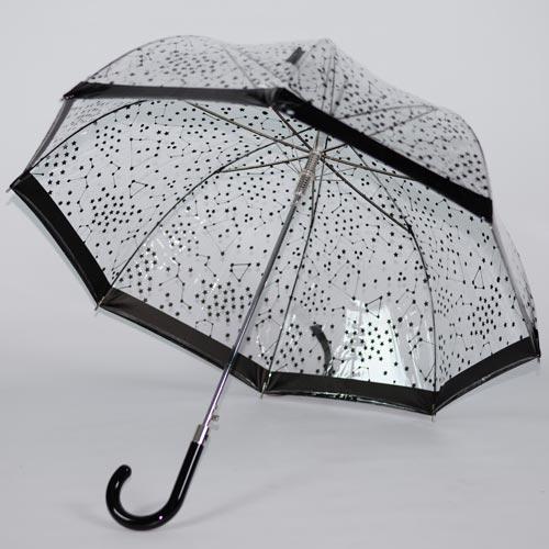 parapluie transparent noir 2