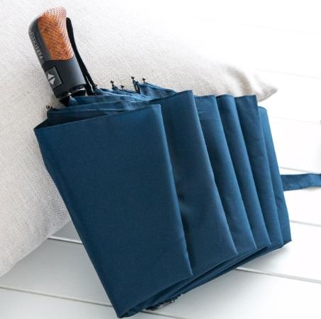 Parapluie pliant de qualité bleu sur coussin