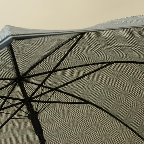 parapluieprinceofwales5