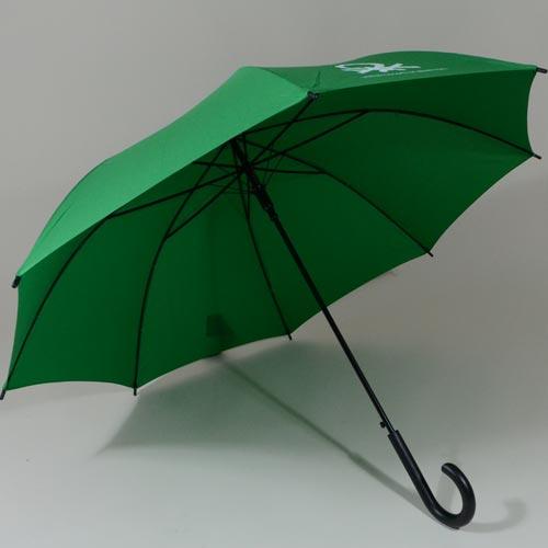 parapluievert4