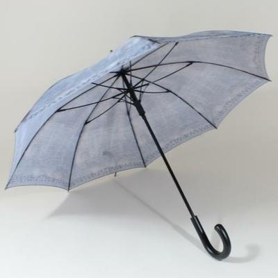 parapluieespritjean3