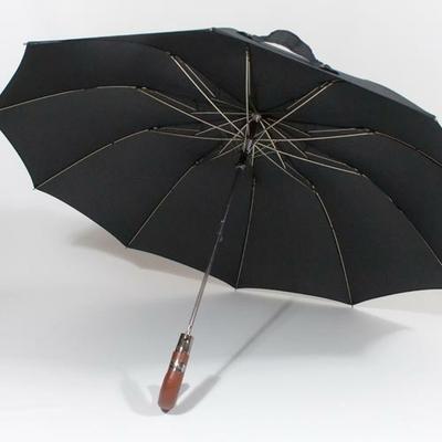 parapluiepliantchavane2