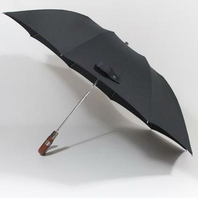 parapluiepliantchavane3