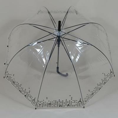 parapluieparistransparent3