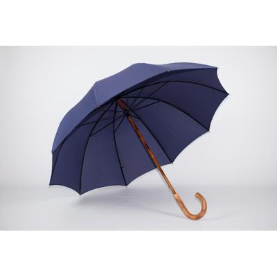 Parapluie de Berger marine