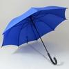 parapluieespritbleu1