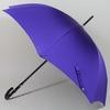 parapluiecloute2