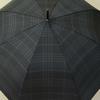 parapluiesportalukaro5