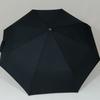 parapluiebaltimore4