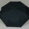 parapluiebaltigreystar1