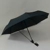 parapluiebaltigreystar2