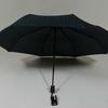 parapluiebaltigreystar4