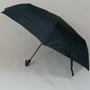 parapluiebostongrey1