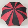 parapluiesunflower3
