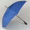 parapluieglambleu1