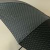parapluiepetitpois5
