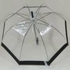 parapluieclearblacksky1
