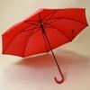 parapluieunirouge1