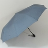 parapluieminigentleman1