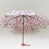 parapluieminihearts2