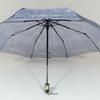 parapluieminijean5