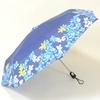 parapluieminiprintempsII1