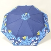 parapluieminiprintempsII2
