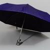 parapluieminiviolet2