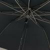 parapluiepliantchavane5