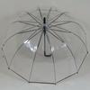 parapluietwelveribs1