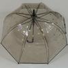 parapluiebubblestars1