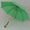 parapluievertcitron1