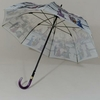 parapluieparis19003