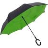 parapluiesuprellavert1