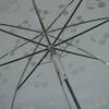 parapluiebubblewcheries4